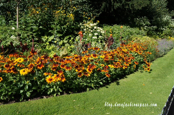fiori_hyde_park