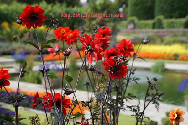 kensington_garden