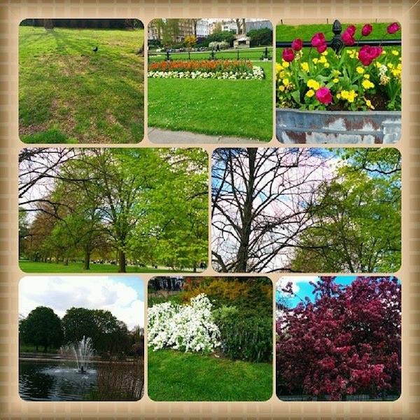 hyde-park-spring