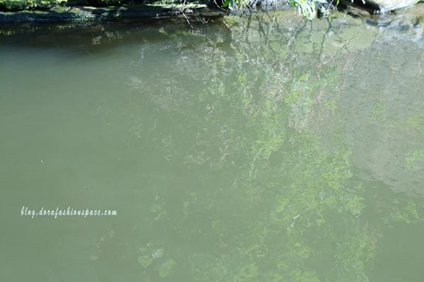 effetto-riflesso-su-acqua