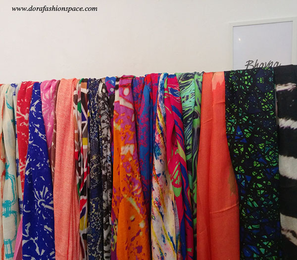 bhavna-bloggers-hangout